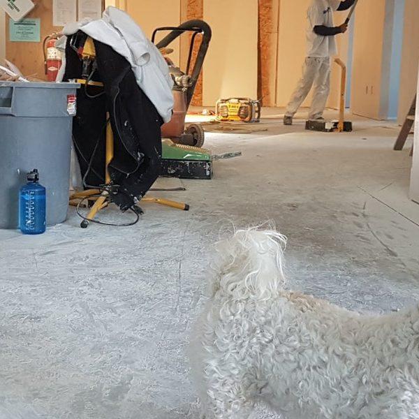 Ile trwa remont kuchni? Instruktaż zagospodarowania czasu