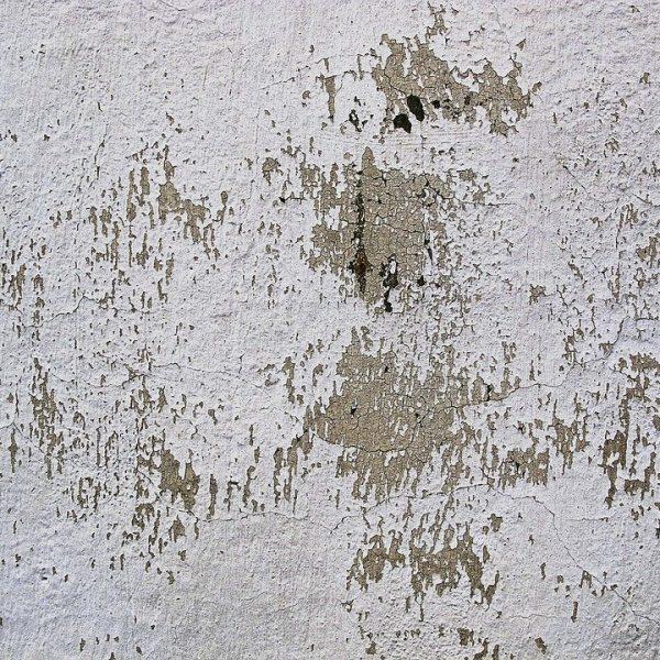 Szybkie sposoby na skuteczną naprawę ścian w kuchni po zalaniu